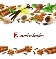 Spices seamless borders vector