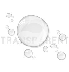 Abstract water drops isolated on white vector