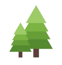 Christmas tree spruce vector image vector image