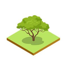 green decorative tree isometric 3d icon vector image