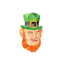 Leprechaun Head Low Polygon vector image vector image