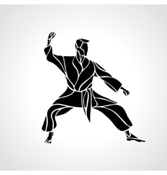 Martial arts pose silhouette karate fighter vector