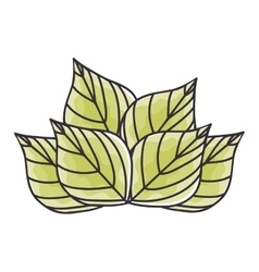 Green leaves plant vector