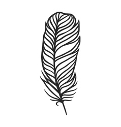 Rustic decorative black feather doodle vintage art vector