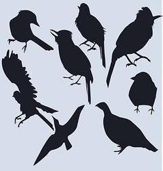 A set of dark silhouettes of birds vector