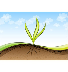 Green plant germinating vector