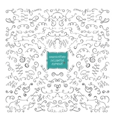 Decorative Element Card vector image vector image