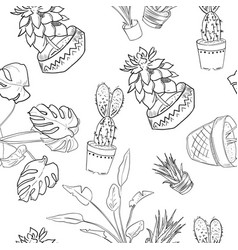 house plants drawing. houseplants pattern of hand drawing vector image house plants