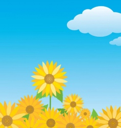 sunflowers on blue sky vector image