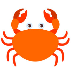 orange crab on white background vector image vector image
