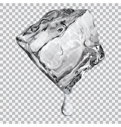 Transparent ice cube vector
