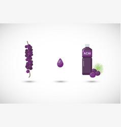 Acai berries juice flat icon set vector