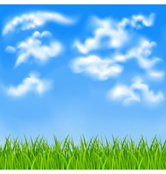 Background with blue sky vector image vector image