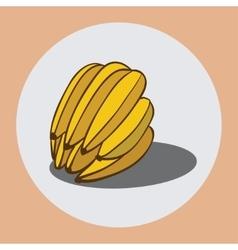 Bananas 2 vector image