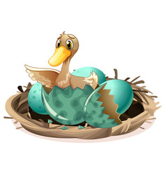 Ugly duckling hatching egg in nest vector