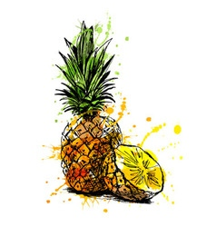 Colored hand sketch pineapple vector