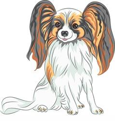 Papillon dog breed vector