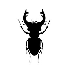 stag beetle insect black silhouette animal vector image