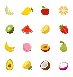 Fruit full color flat design icon vector image
