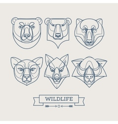 Animals linear art icons vector image vector image