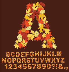 autumn alphabet design vector image