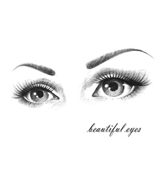 beautiful eyes vector image