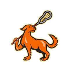 Dog with lacrosse stick side view vector