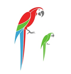 Macaw parrot and green parrot vector