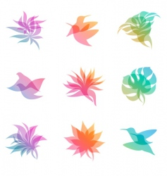 Nature elements vector