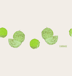 set of cabbage hand drawn sketch line art vector image