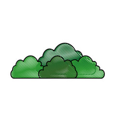 Isolated cute bush vector