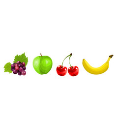 four painted fruit vector image
