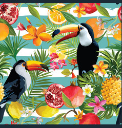 seamless tropical fruits and toucan pattern vector image