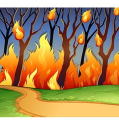Wild fire in the forest vector image vector image