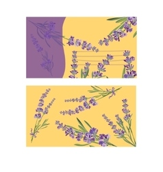 Set invitation cards with flower frame lavender vector