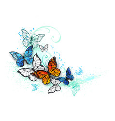 Artistic morpho and monarchs vector