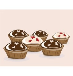 Chocolate and vanilla cupcakes vector image vector image