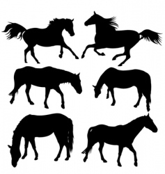 horse silhouette collection vector image vector image