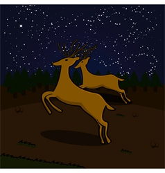 Reindeer at night vector image