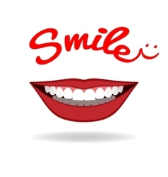 Smiling mouth with beautiful healthy teeth vector image