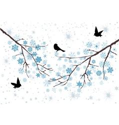 Snow birds vector