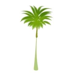 Thin palm tree icon cartoon style vector