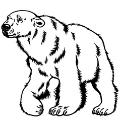 polar bear black white vector image vector image