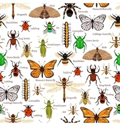 Insects Seamless Pattern vector image vector image
