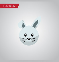 isolated rabbit flat icon bunny element vector image vector image