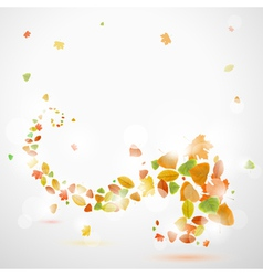 Autumn abstract background with leaves vector