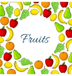 Fruit round poster garden and exotic fruits vector