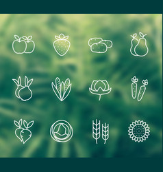 Harvest farming linear icons vector