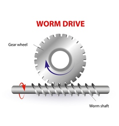 Worm drive vector