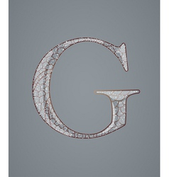 Abstract letter g vector